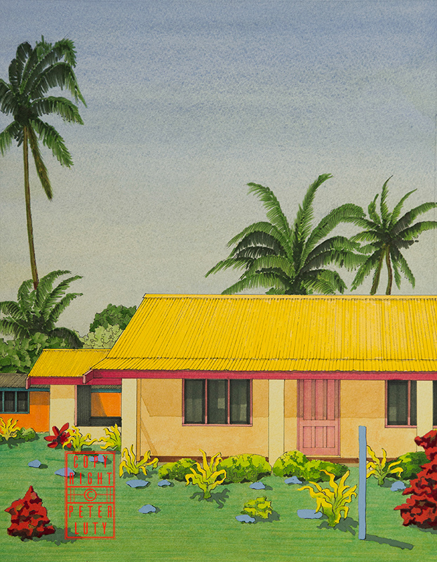 Elevation of brightly coloured Fiji House 2